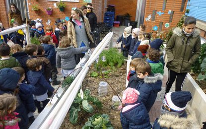 Knowing the plants | 2º segundo ciclo Infantil #miralrededor