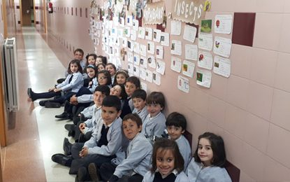 Animal exposition | 1º Ed. Primaria